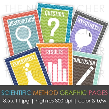 Modern & Stylish Scientific Method Graphic Pages/Posters