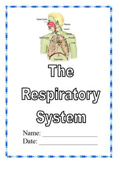 Modified Anatomy; Respiratory &  Breathing Unit, Different