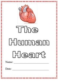 Modified Anatomy Notes & Test; Human Heart Unit, Differentiated for Special Ed