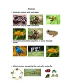 Modified Animal Assessment