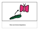 Modified Animal and Plant Adaption Story