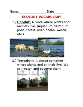 Speech Therapy-Special Education-Modified Ecocolumn Vocabulary Sheet