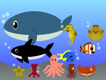 Modified Lessons Clipart of Aquatic Animals (Colored and BW)