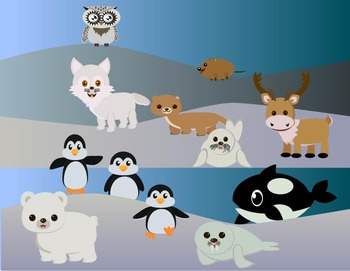 Modified Lessons Clipart of Arctic Animals (Colored and BW)