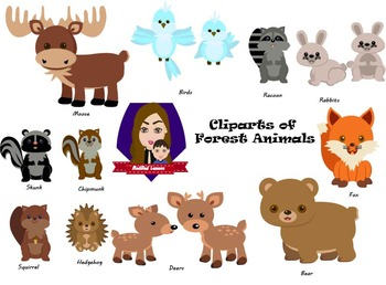Modified Lessons Clipart of Forest Animals (Colored and BW)