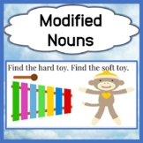 Modified Nouns - Expressive and Receptive Language