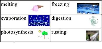 Modified Physical and Chemical Change Cut and Paste; Special Ed