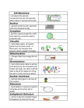 Modified Plant and Animal cell unit