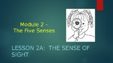 Engage NY:  Module 2 - The Five Senses:  Lesson 2A - The Sense of Sight