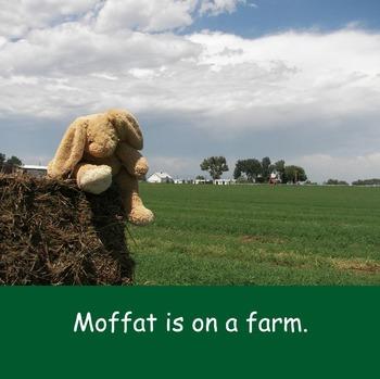 Moffat The Rabbit On A Farm Softcover Book
