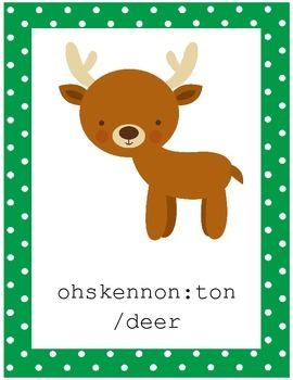 Mohawk Language: Animal Word Cards