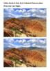 Mojave Desert Handout