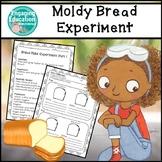 Moldy Bread Experiments