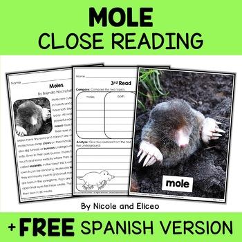 Close Reading Passage - Mole Activities