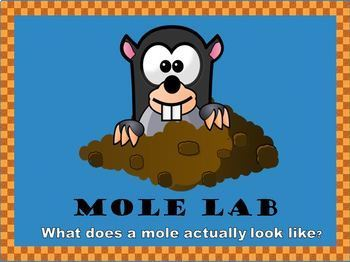 Mole Lab-What does 1 mole actually look like?
