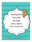 Mole & The Baby Bird Focus Wall Posters 1st Grade Reading Street CC 2013
