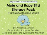 UPDATED Mole & the Baby Bird Literacy Pack - First Grade F