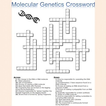 Molecular Genetics Crossword Puzzle
