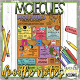 Molecules Squiggle Sheets & Understanding Checkpoint  (NGSS Aligned)