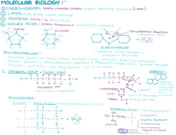 Molecules Doodle Notes Pack