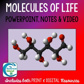 Molecules of Life PowerPoint, Notes & Videos