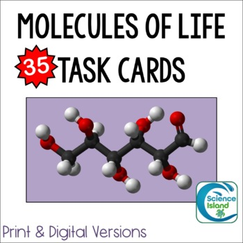 Molecules of Life Task Cards - Organic Chemistry for Biology