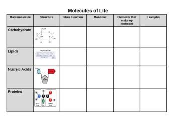 Molecules of life chart
