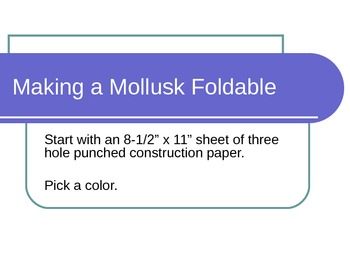Mollusk Foldable PowerPoint
