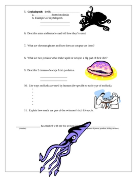 Mollusk Learning Goals and Study Guide
