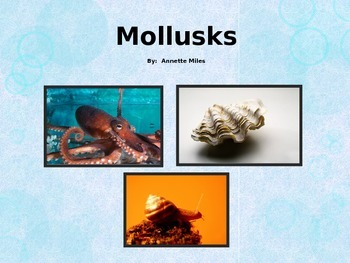 Mollusks Powerpoint