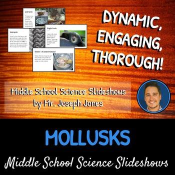 Mollusks: A Life Sciences Slideshow!