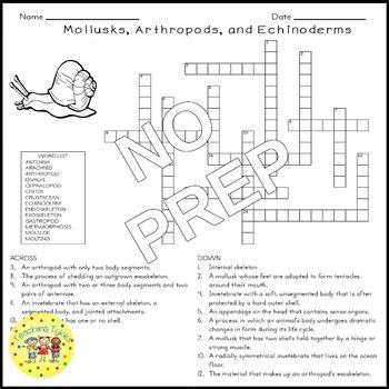 Mollusks Arthropods Echinoderms Crossword Puzzle