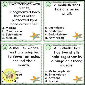 Mollusks, Arthropods, and Echinoderms Task Cards
