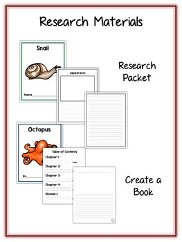 Mollusks Research Project - 11 Types, Vocab Cards, Packet, Book & More