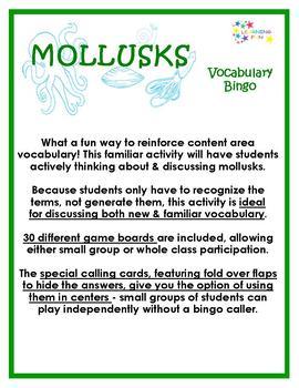 Mollusks Vocabulary Bingo