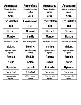 Mollusks, Worms, Arthropods, and Echinoderms Cut-n-Paste Vocabulary