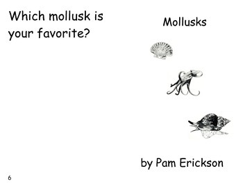 Mollusks- a non-fiction guided reading book