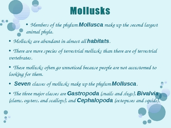 Mollusks and Annelids PowerPoint Presentation Lesson Plan