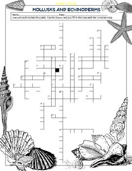 Mollusks and Echinoderms Crossword Puzzle