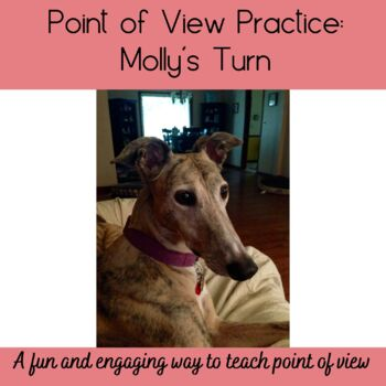 Molly's Point of View Writing Practice