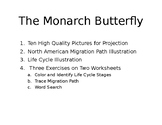 Monarch Butter Fly Lesson Plan