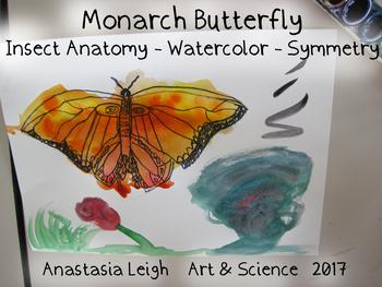 Monarch Butterflies Watercolor