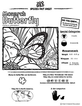 Monarch Butterfly -- 10 Resources -- Coloring Pages, Reading & Activities