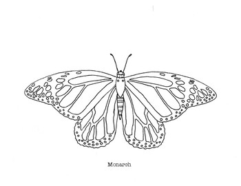 Monarch Butterfly Coloring Page by Mama Draw It | TpT