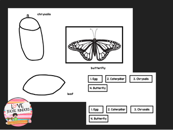 Monarch Butterfly Craft and Life Cycle