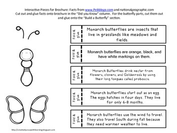 Monarch Butterfly Interactive Brochure, Research, Writing, and Technology