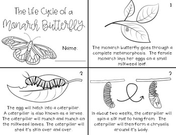 Monarch Butterfly Life Cycle Mini Book