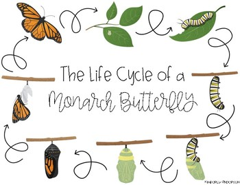 Monarch Butterfly Life Cycle Mini Unit Packet