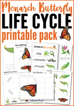 Monarch Butterfly Life Cycle Printables