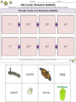 Monarch Butterfly Life Cycle Sort Cut and Paste Activity #2 - Sequence